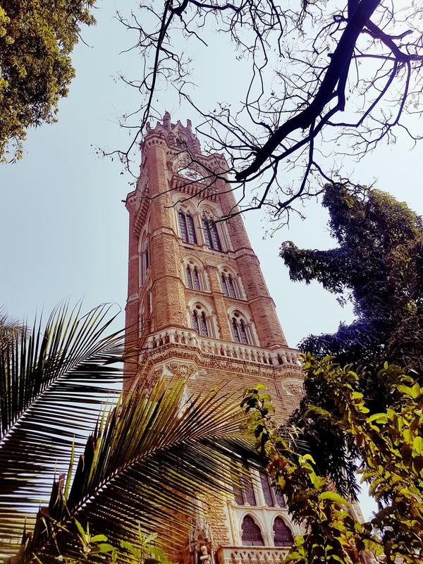 Outdoors Built Structure Heritage Building Mumbai Sky Tree Outdoors Day Nature Amazing View