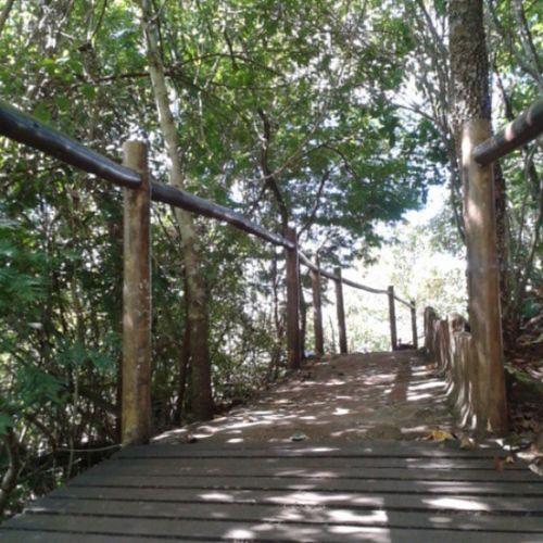 O caminho... Tôrhyca Parquemunicipalsaltodosucuriú VerdeQtiquerover