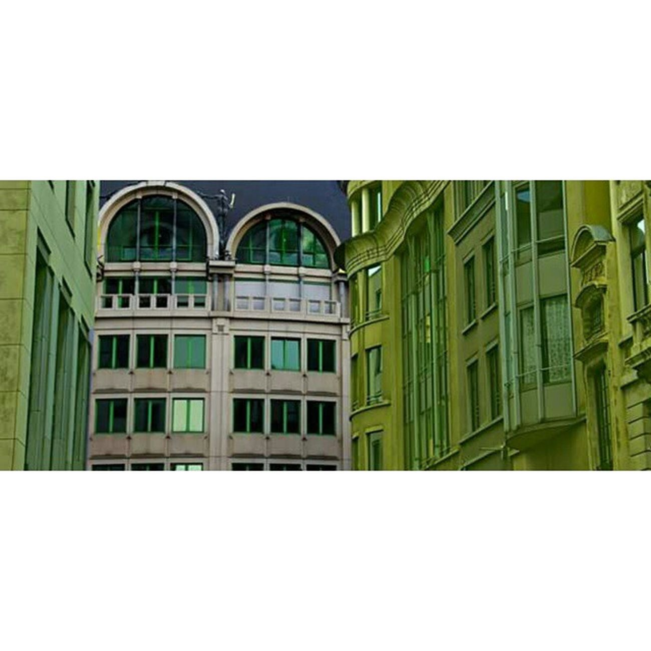 Look Lookyou Regard Jetevois Eyes Yeux Fenêtre Windows Architecture Brussels Bruxelles Centre Ville Centreville Green Vert Tön Tone Marvin