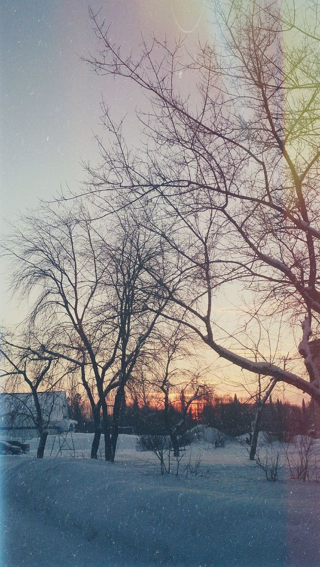 Закаты зимой особенно красочны. Walking Around Winter Winter Sky Winter Sunset First Eyeem Photo