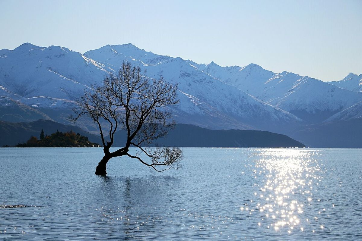 Water Lake Nature Tree Landscape Outdoors Sky Scenics Blue Lonelytree Wanaka Tree Mountain