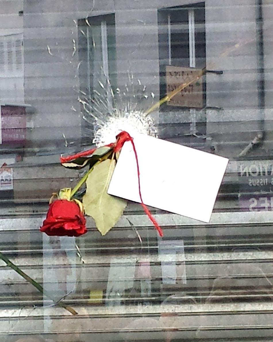 Resist Red Day No People Outdoors Water Close-up Bullitt Bullit Holes Roses Paris City Photography Death Memories Terrorism