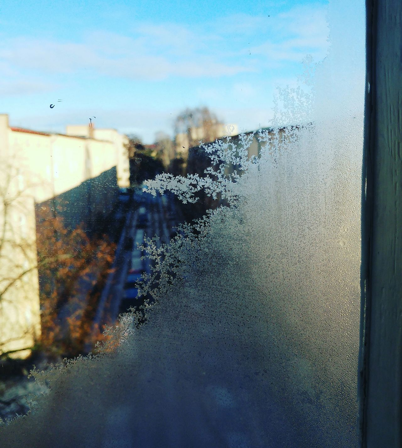 Baby it is cold Outside Window ❄ Sky Wet Looking Through Window No People Close-up Cityscape Nature Day Tree Berliner Ansichten Capture Berlin From My Point Of View Looking At Things Ice Crystal