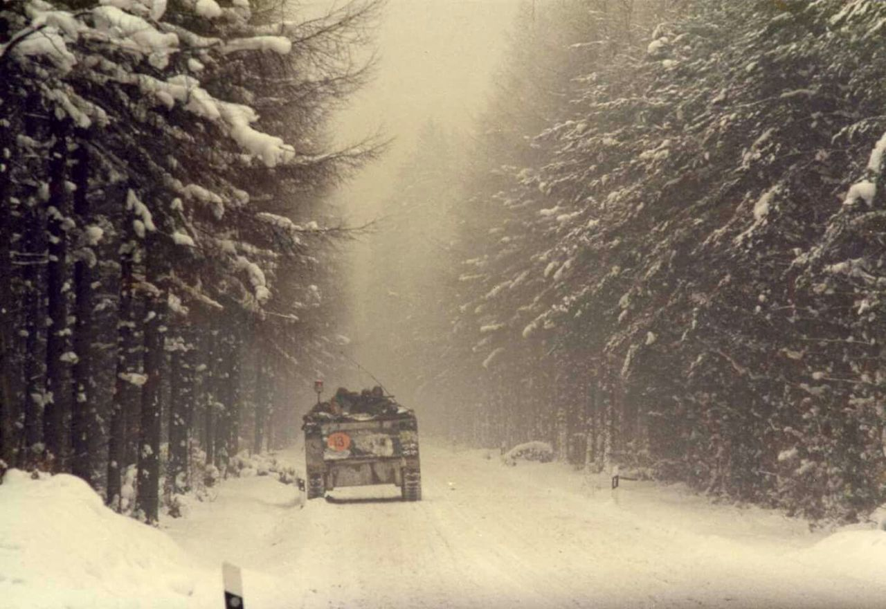 tree, winter, snow, cold temperature, transportation, nature, outdoors, snowing, day, landscape, no people, beauty in nature