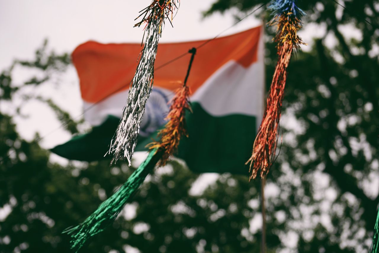 EyeEm LOST IN London No People Outdoors Hanging Day Low Angle View Tree Close-up Nature Indian Flag Lost In Translation India Flag Store Market Confetti Open Edit