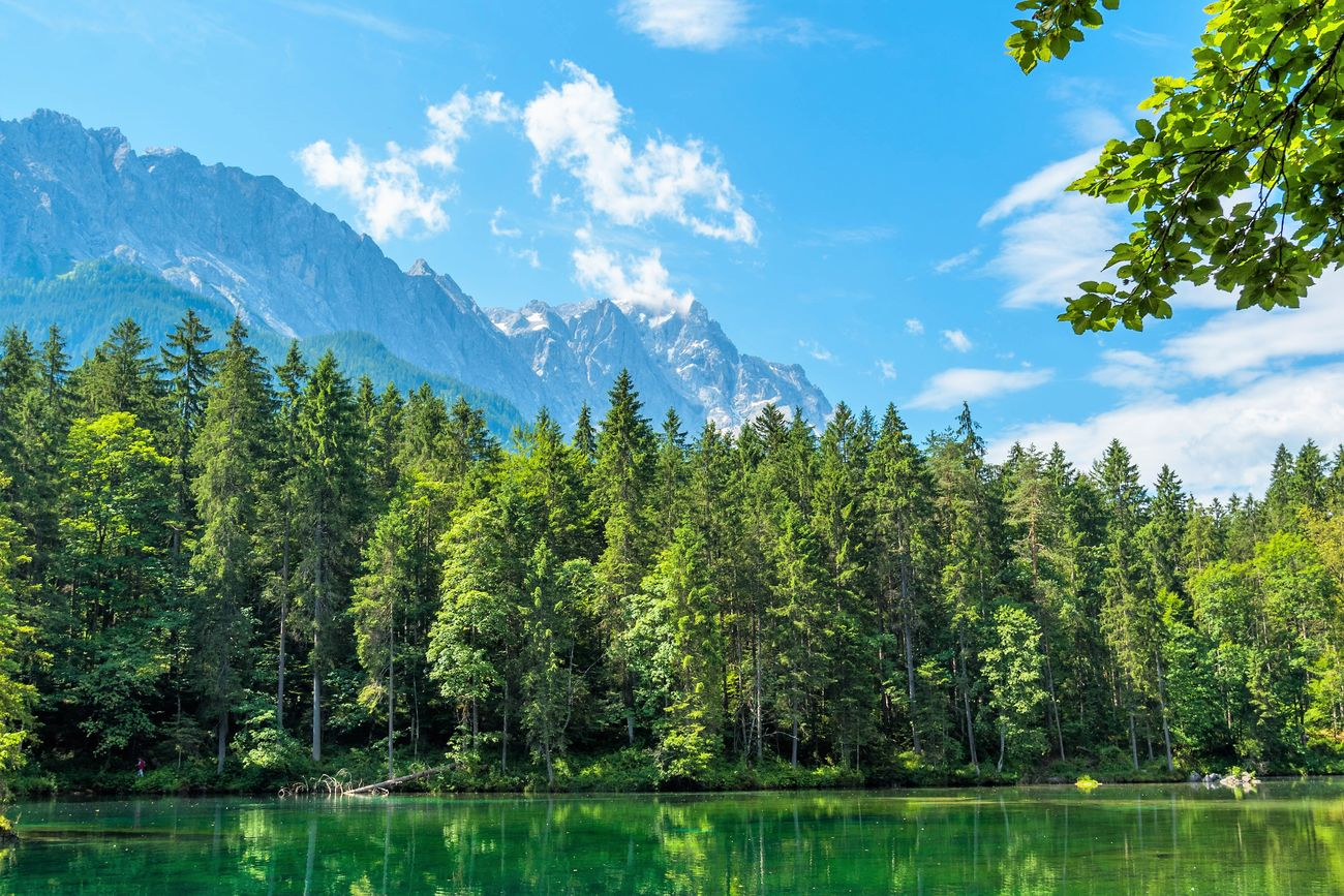 Zugspitze & Badersee Backgrounds Badersee Blue Day Forest Garmisch Partenkirchen Lake Landscape Mountain Mountain Range Natural Parkland Nature No People Outdoors Pinaceae Pine Woodland Scenics Sky Summer Tree Water Wilderness Zugspitzeblick