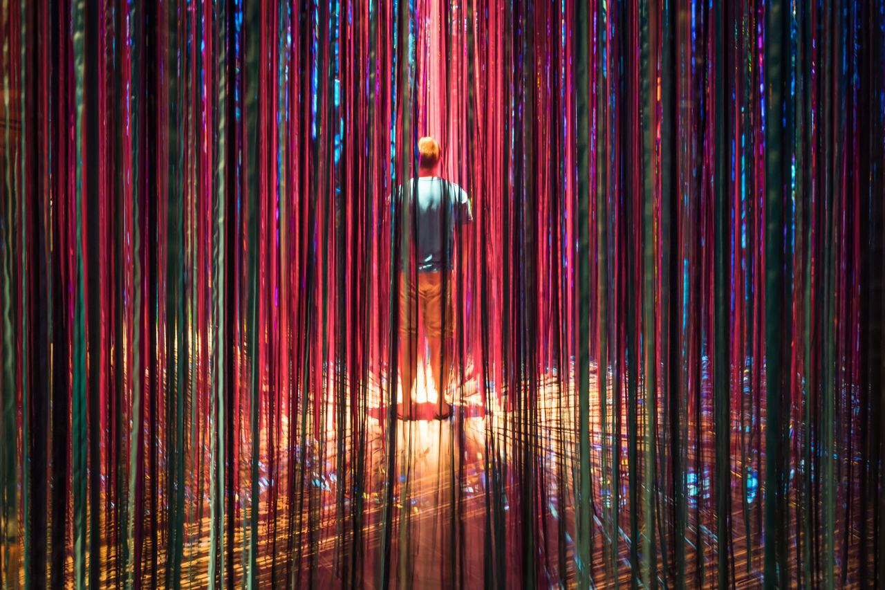 Day Illuminated Indoors  Lifestyles Men Nature One Person Real People Rear View Ringling Museum