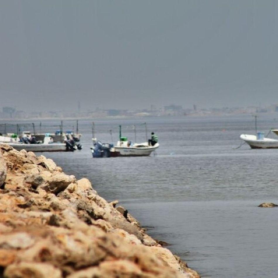 كورنيش_سيهات  تصويري  عدستي  عرب_فوتو انستقرام