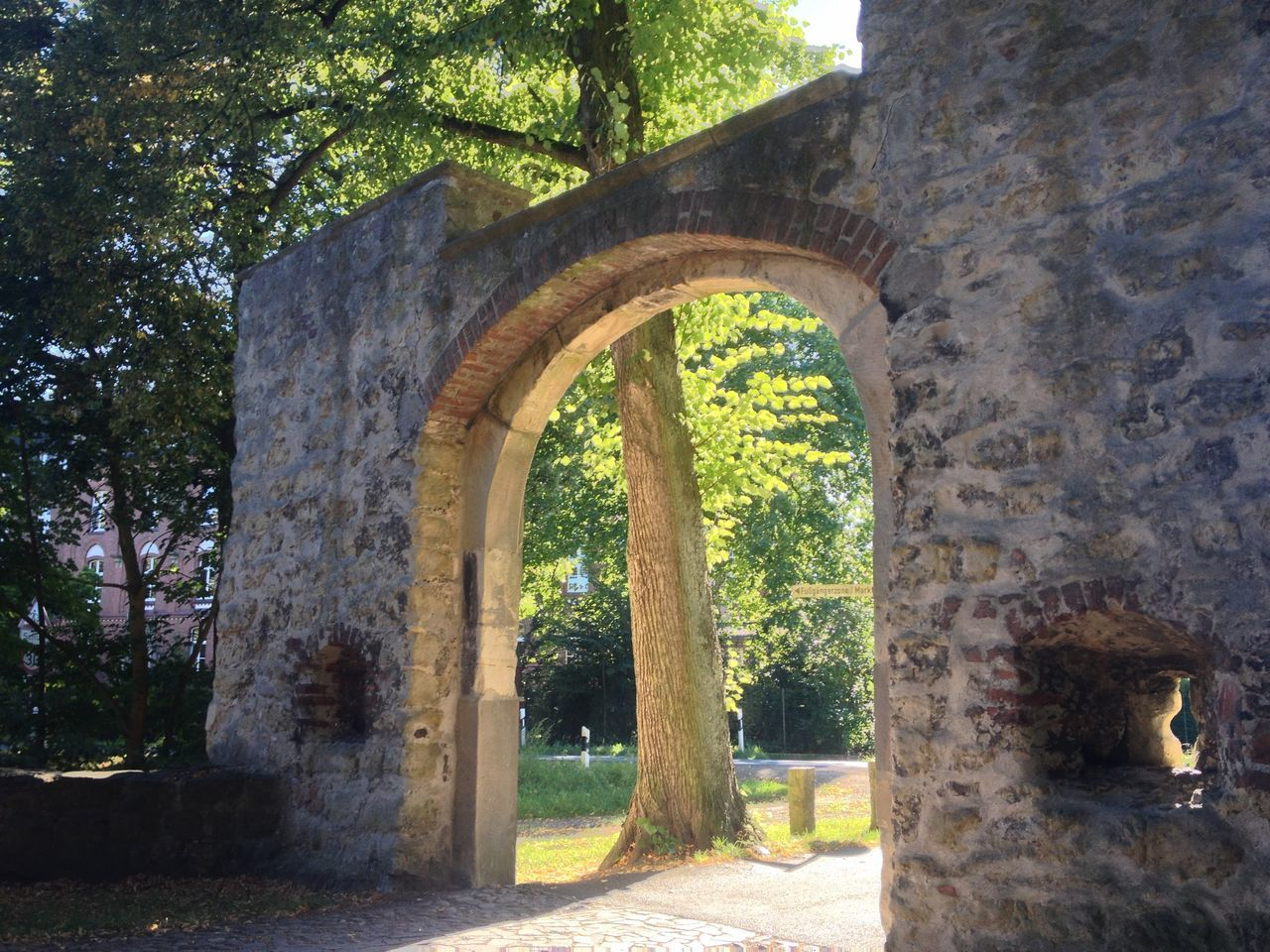 Arch Architecture Built Structure Burg Vischering Green History Light Old Old Ruin Outdoors Passage The Past Tree Tree Trunk
