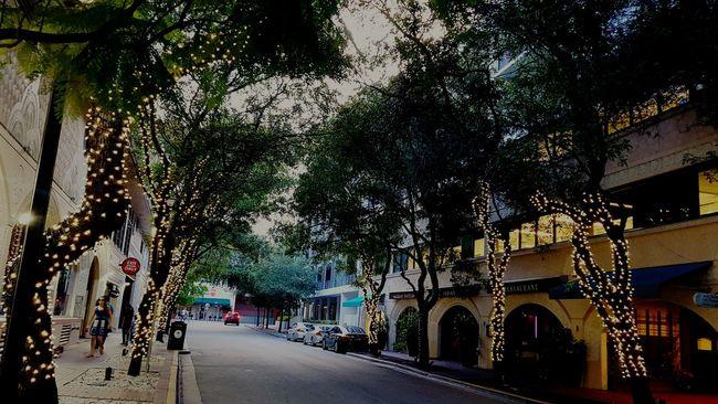 Streetphotography CoconutGrove Miami Florida Walking Around Street City Lights Lights