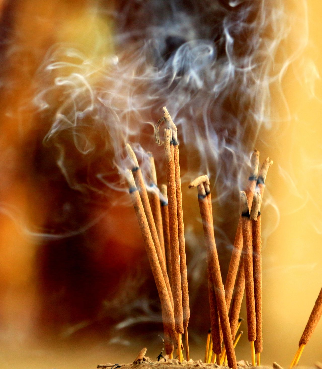 Beauty In Nature Burning Close-up Day Faith Fragility Gragonfly Gragrance No People Religion Religion And Beliefs Smoke - Physical Structure Temple