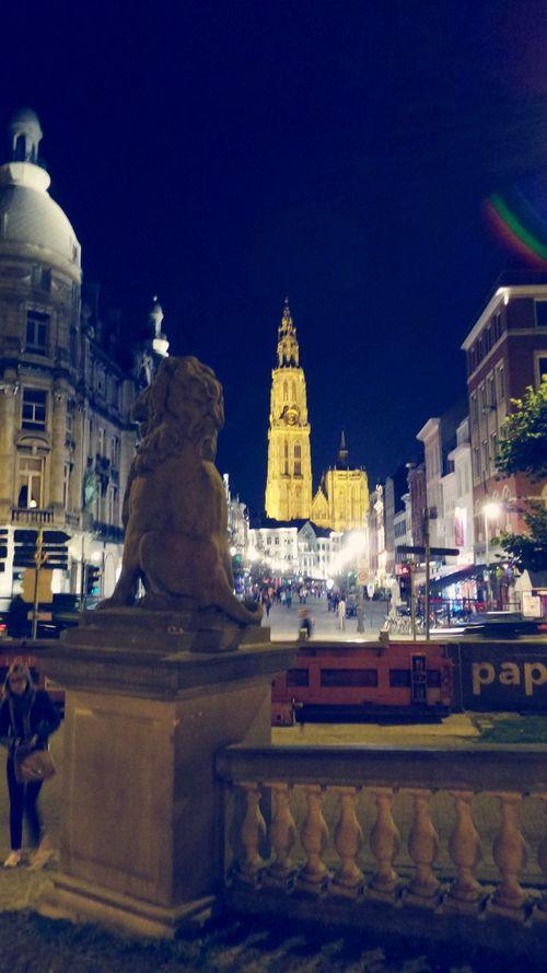 Antwerpen Museumnacht Belgium Evening Quality Time