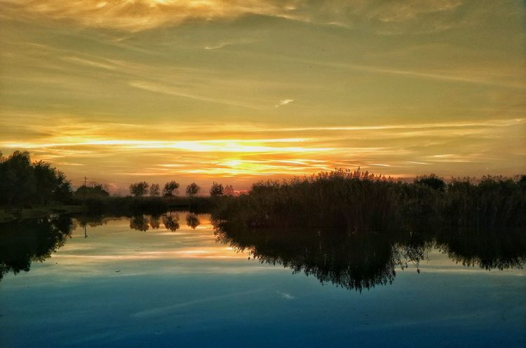 Reflection Sunset Nature Sky Tree Tranquility Water Scenics Beauty In Nature Tranquil Scene No People Outdoors Landscape Day Green Color Blue Orange Color Novi Kozarci