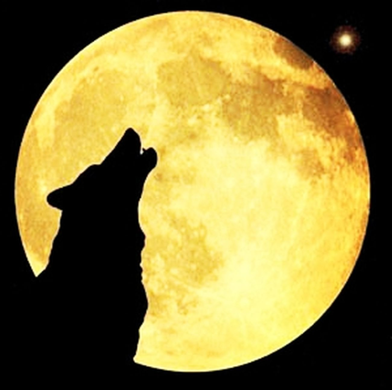 Wolf Moon Beautiful ♥ Goodnight✌
