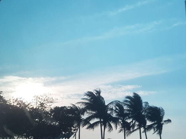 Cloud And Sky sunset #sun #clouds #skylovers #sky #nature #beautifulinnature #naturalbeauty Copacabana - Rio De Janeiro Samsung S7 Edge S7edgephotography Movingcarcapture