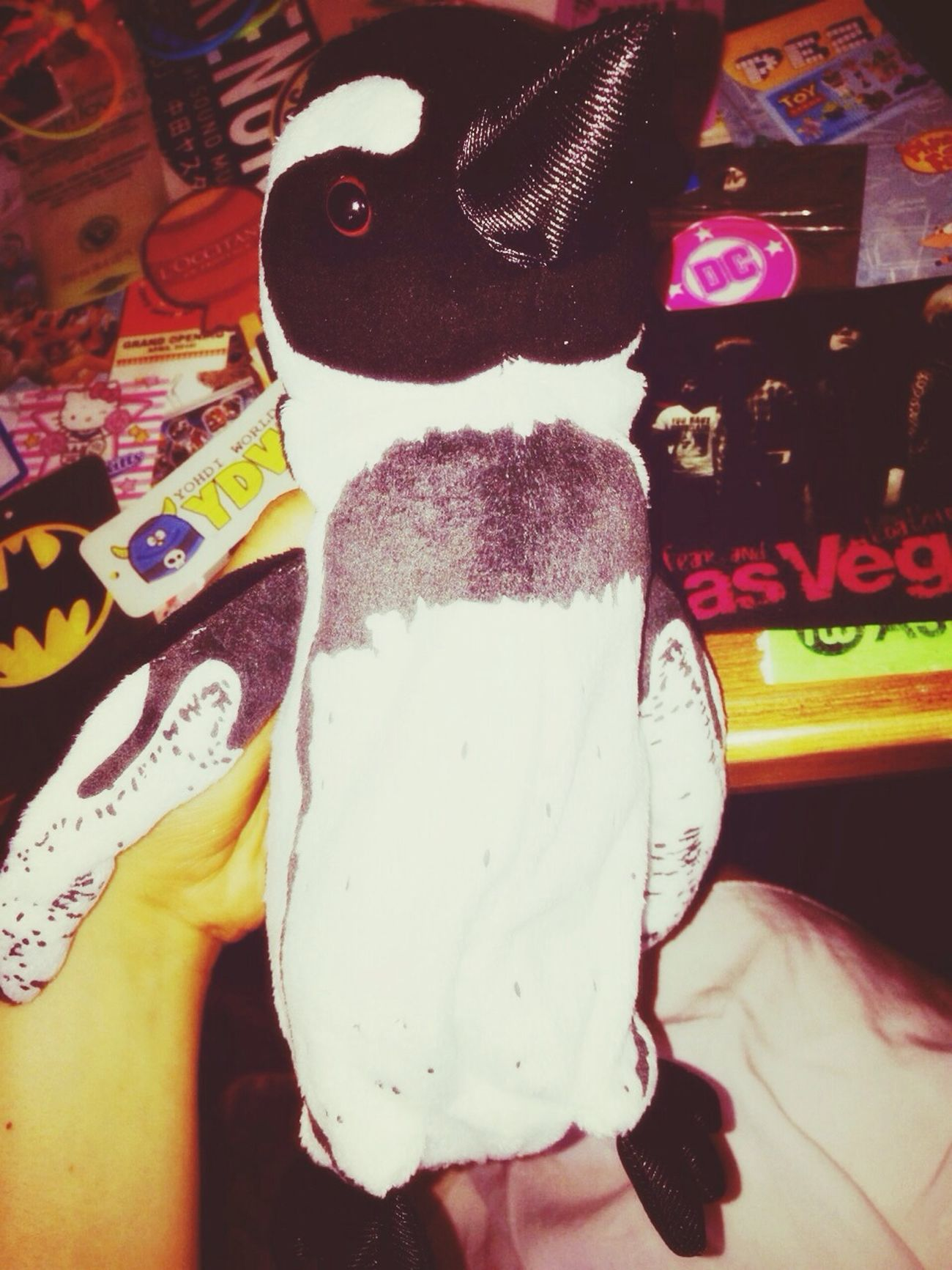 Pencase Penguin Cute New Item