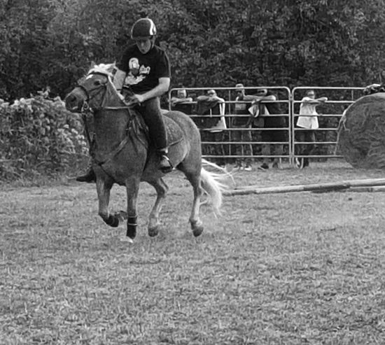 Carousel Horse Horserider Outdoors Domestic Animals Horse One Animal Country Life People Country Nature Day Countryfair Real People Blackandwhite Horseback Riding Enjoying Life Cellphone Photography Taking Photos