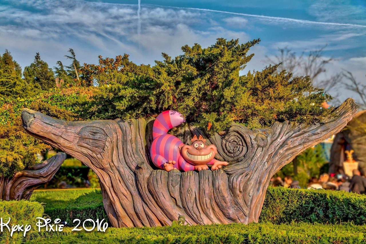 Photography Disneyland Resort Paris Parcdisneylandparis Paris Magic Moments Waltdisney Disneyland Paris Disneyland Magic Chat Cheshire Cat