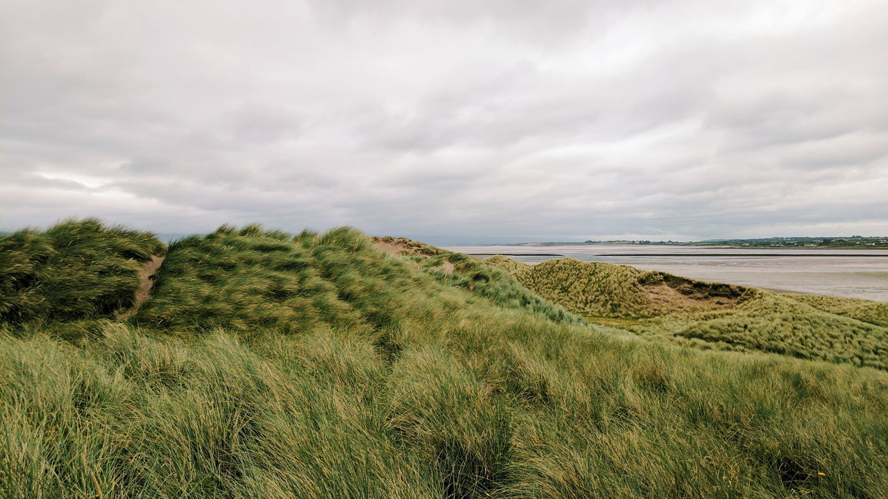 Beach Cloud - Sky Sea Landscape Nature Scenics Sand Water Sky Day Tranquility Outdoors No People Beauty In Nature Grass Dunea Nature Outdoor Photography Google Pixel Perspectives On Nature
