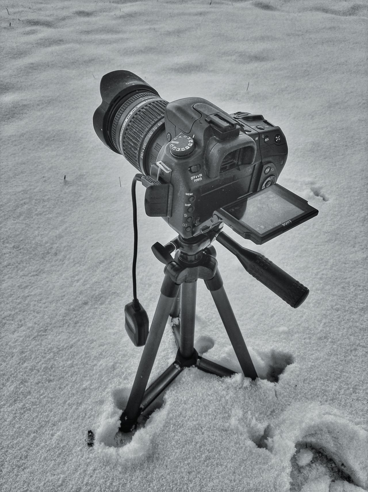 Camera Tripod No People Outdoors Day Snow Winter Wintertime Cold Frozen Sony Sony Alpha Alpha Nature Black And White Blackandwhite