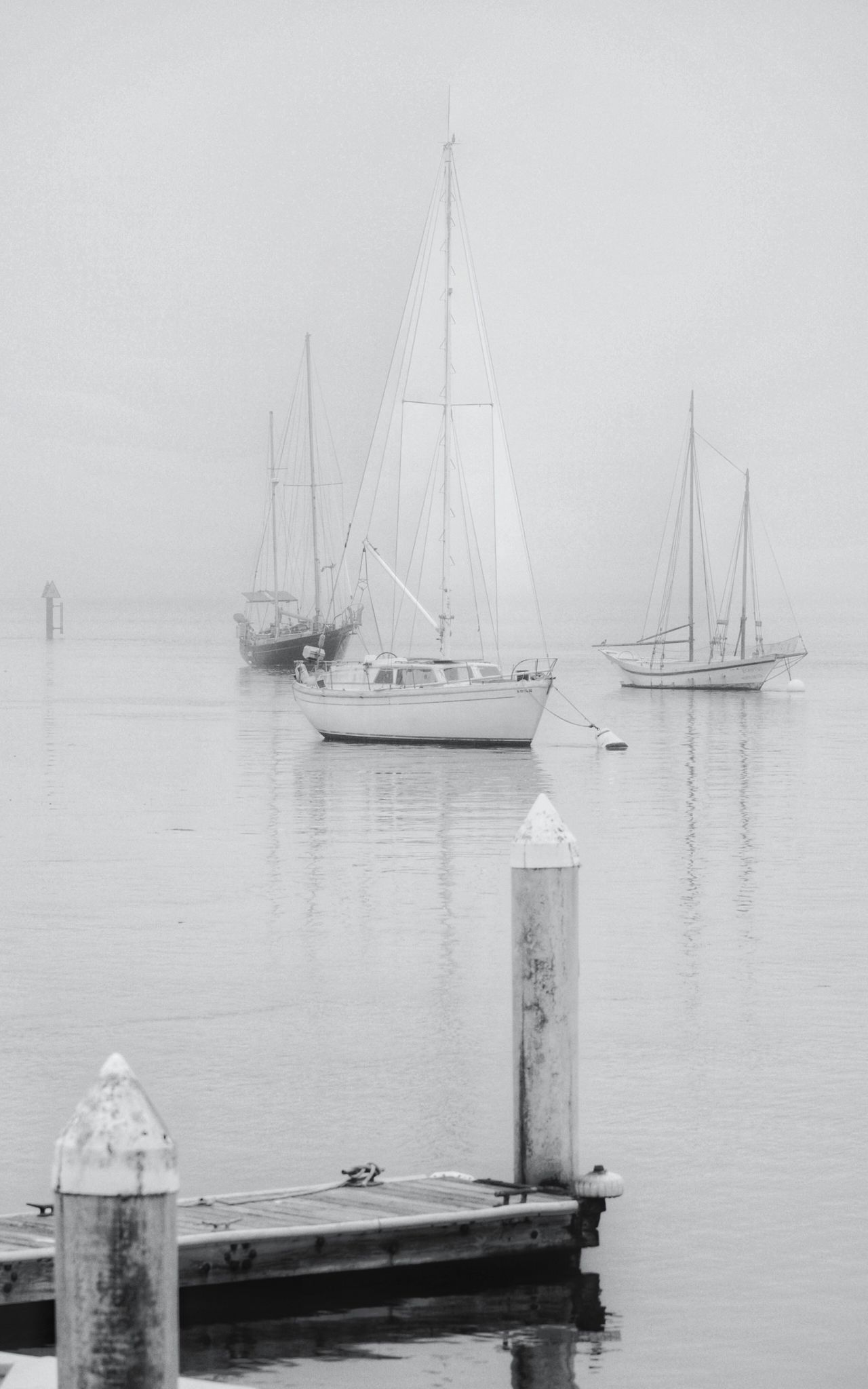 WHITES Nautical Vessel Sea Water Transportation Boat Mode Of Transport Sailboat Sailing Mast Moored Outdoors Tranquility California EyeEm Gallery White Morro Bay Eye4photography  Horizon Over Water Nature Day Harbor No People Scenics Sailing Ship Yacht