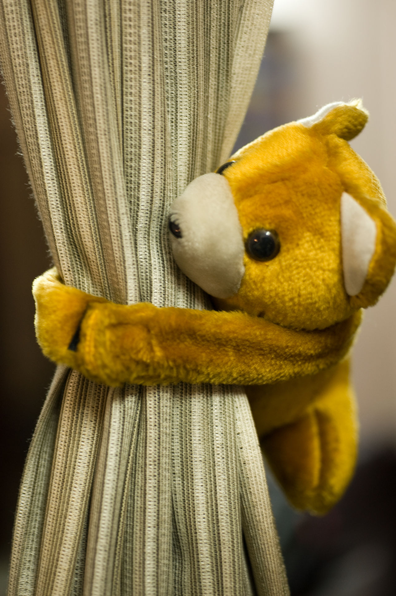 This curtain is held together in the middle by this cute stuffed toy in the shape of a bear Curtain Curtain Closer Cute Stuffed Toy Indoors  No People Stuffed Bear Stuffed Toy Toy