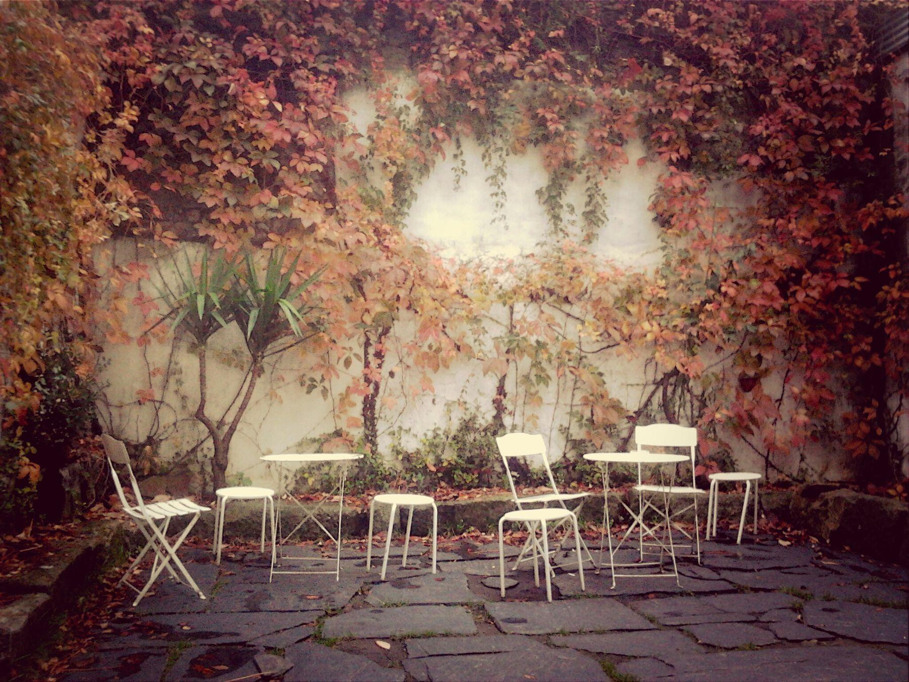 Colors Of Autumn EyeEm Porto