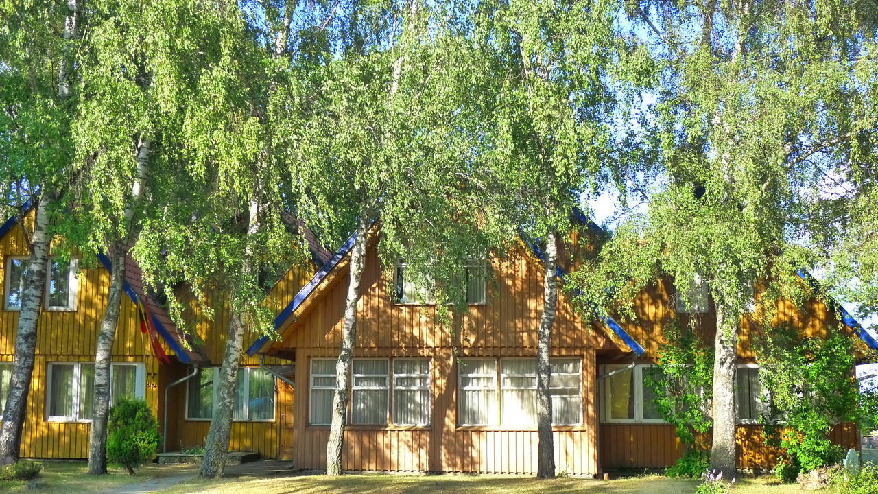 Architecture Beauty In Nature Birch Birch Tree Building Exterior Built Structure Day Green Color Growth Nature No People Outdoors Nida Lithuania Curonian Spit Kursiu Nerija Sky Tree Wood House