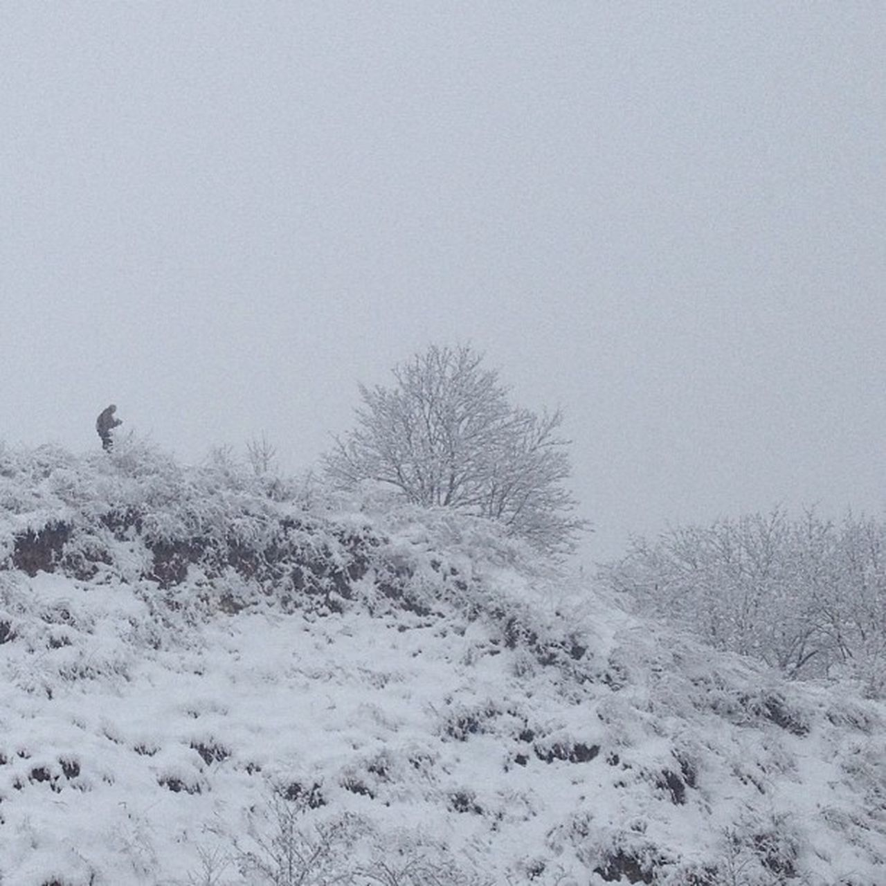 Lonely cameraman Kiev Ukraine Igukraine Instagram Iphoneonly Igersukraine Snow The Great Outdoors - 2016 EyeEm Awards