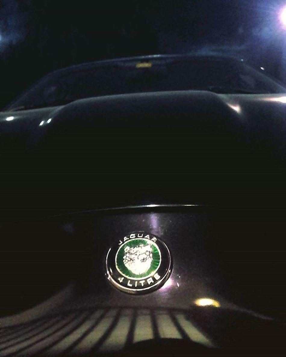 😈 well hello there kitty 😍😌 JAGUAR Xkr 4liter V8 Justfellinlove Cruelintentions Jag Cars Sportcar Classic Yummy Carporn Hinhinhin Stormyweather Openroad Yesplease Abudhabi UAE