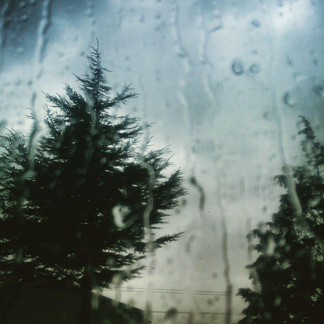 Havada son durum :) 🍀Ig_photo_life 🎶Fotografdukkanim 🔹Turkishfollowers Ⓜ️Fotografheryere 🍂Ig_global_life🍀 Anlatistanbul 🍂Gulumseaska💟 Igbest_shotz 🙏Fotohayat🉑 Grafimx 🍂My_dream_turkey 🏯Photo_turkey🍂 Türkiyefk 🍀Sizinkareleriniz🍂 Fotozamani 🍂Gününkaresi🍁 Photo_storee 🎇Ig4world🍂 Objektifimden 🍂Gokkusagıphotography 🍂Turkinstagram🍀 Zamanidurdur 🍂Instagramturkey 🍂Allshotsturkey🍂 Igturko 🍀anipaylas 🍂nature_wizards🍂canlifotograf 🍂fotozamani🍂fotosentez