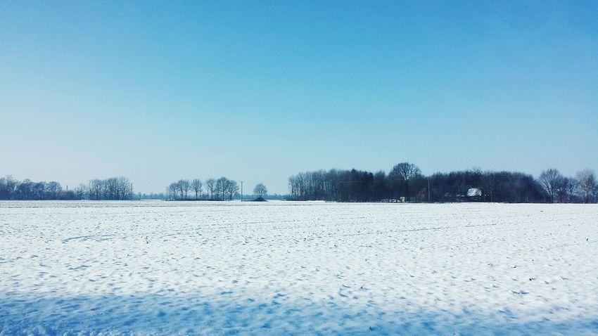 Snow ? Selfmade Edited
