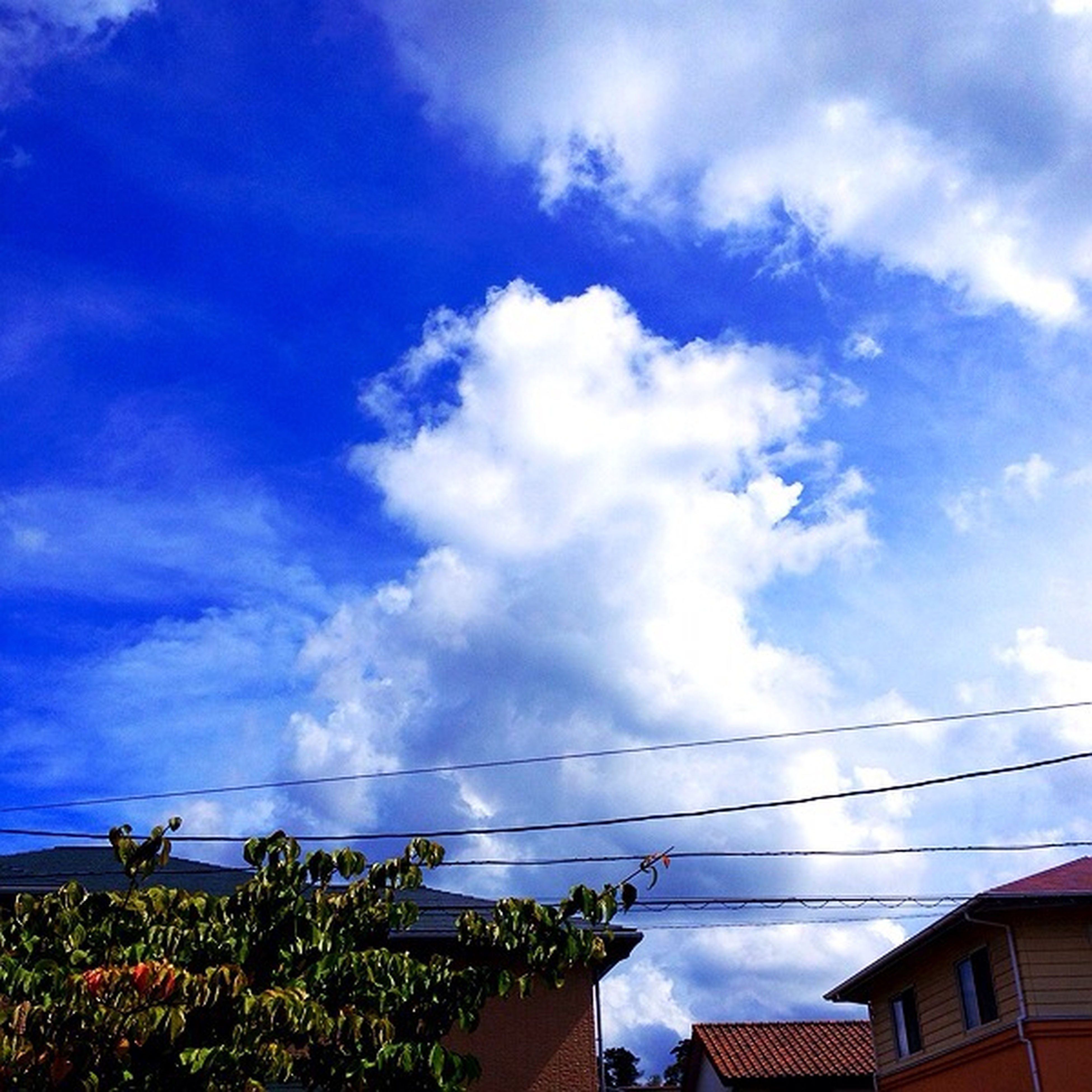 sky, building exterior, built structure, architecture, cloud - sky, low angle view, power line, house, blue, cloud, cloudy, cable, residential structure, residential building, connection, tree, electricity pylon, nature, day, outdoors