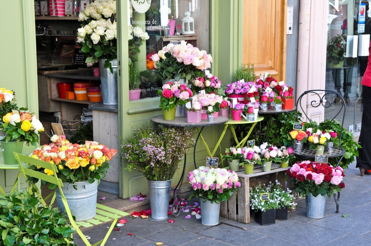 Flower Freshness Fragility Nature Beauty In Nature Retail  Variation Plant Flower Shop For Sale Small Business Store Multi Colored Growth Arrangement Choice Blooming Florist Flower Head Outdoors