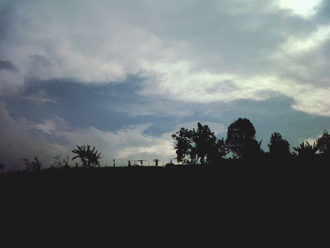 Hello World Check This Out Photos Around You Batusangkar Padang West Sumatera INDONESIA Nature Photo