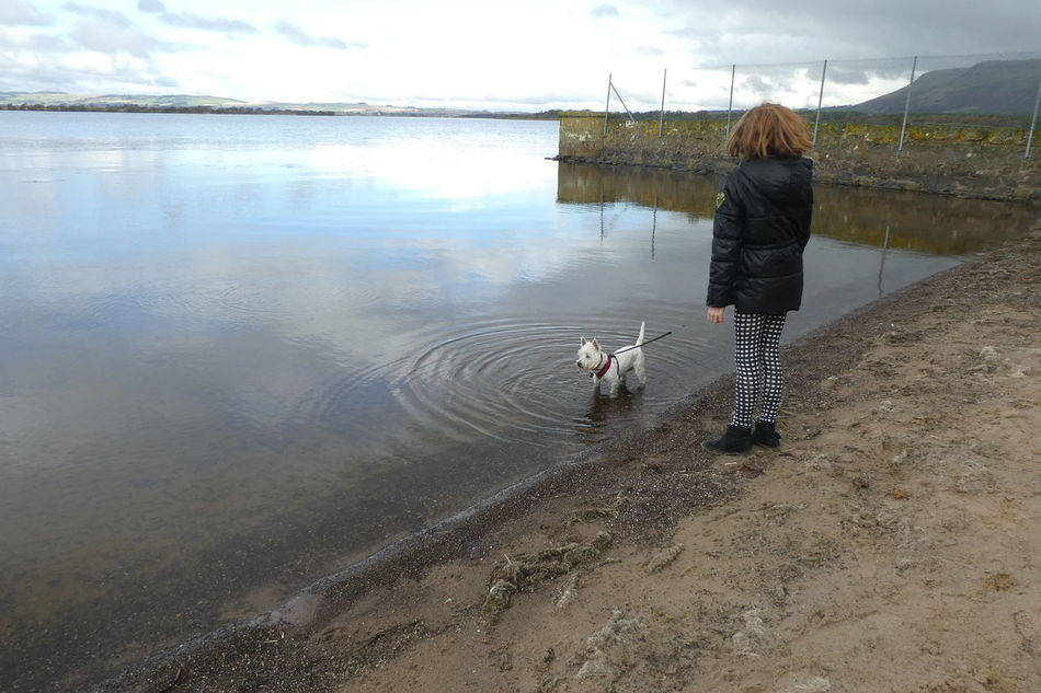 Beauty In Nature Day Full Length Loch  Loch Leven Men Nature One Person Outdoors Real People Rear View Scotland Scottish Sky Tranquil Scene Tranquility Water West Highland White Terrier Westie