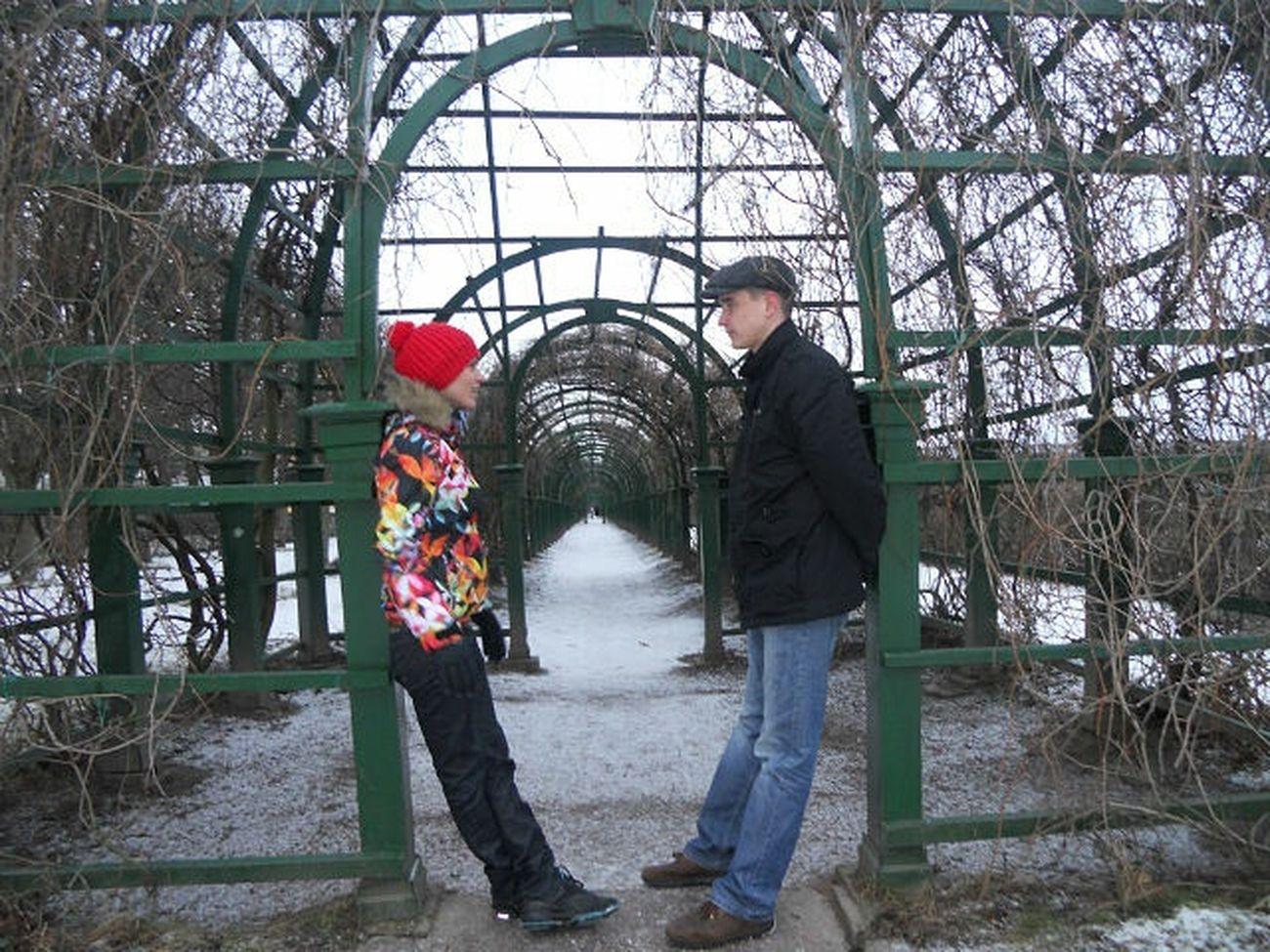 Петергоф, Разводная ул. крытые аллеи Верхнего сада