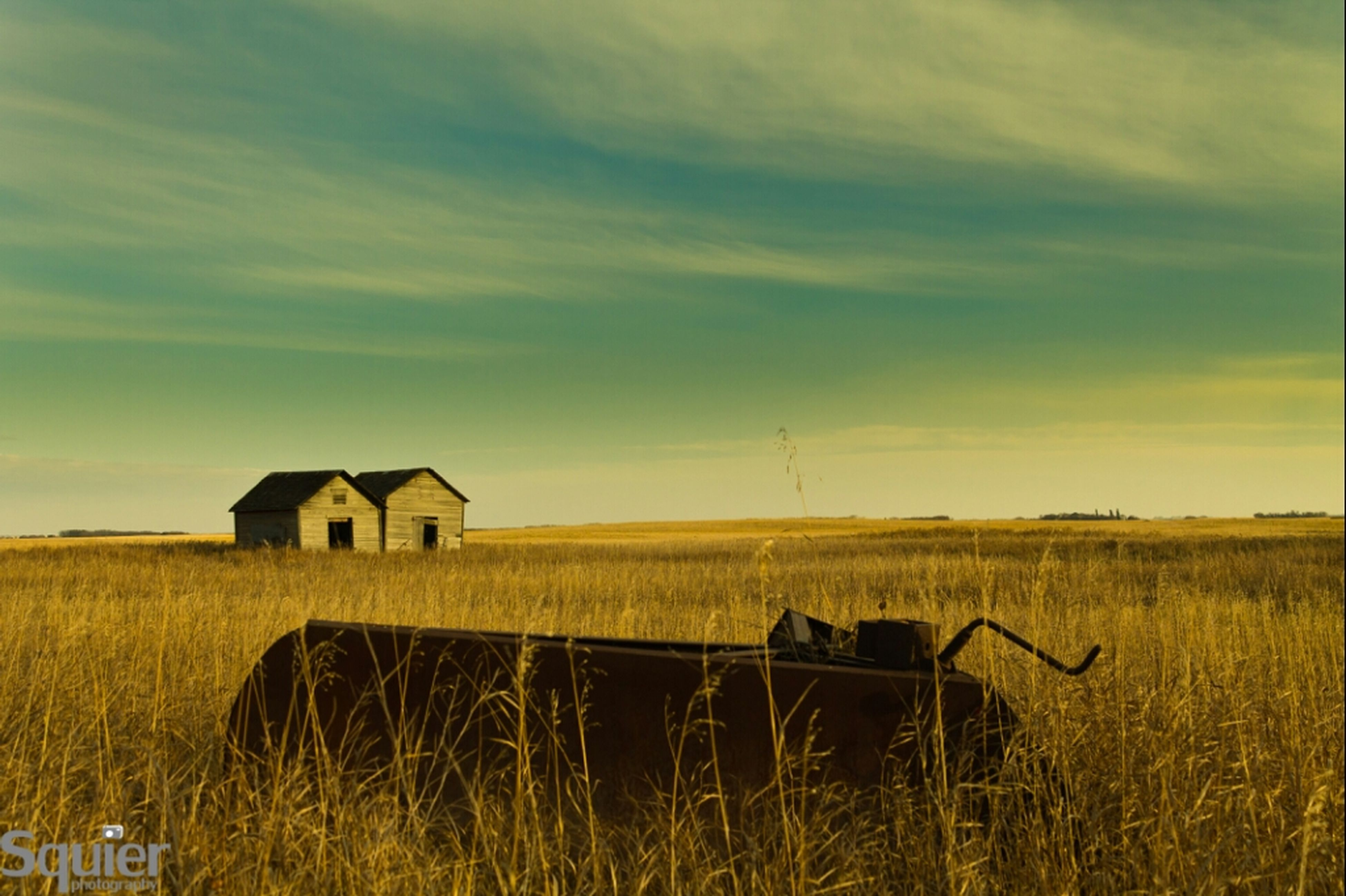 field, rural scene, agriculture, farm, sky, landscape, grass, tranquil scene, building exterior, barn, house, built structure, cloud - sky, tranquility, bale, hay, nature, crop, harvesting, architecture