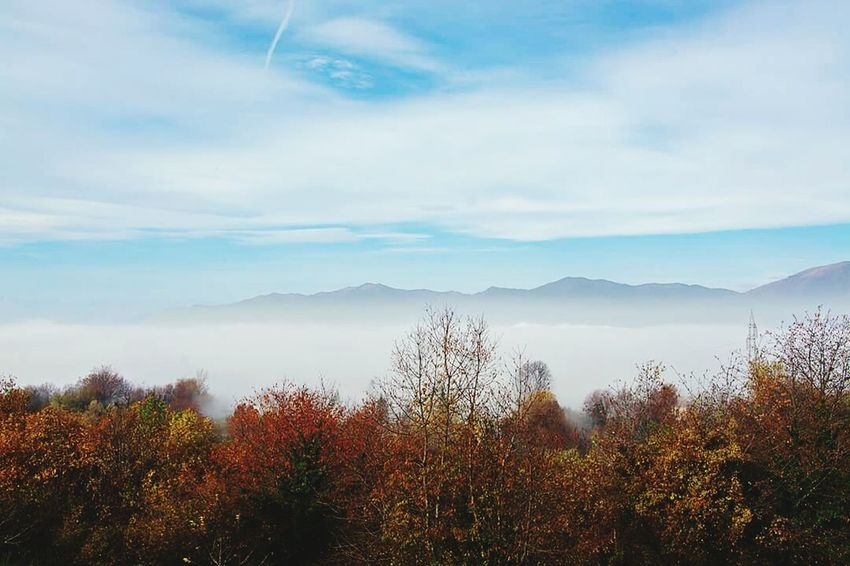 Mointains Mointain View Autumn🍁🍁🍁 Loveit❤ Love ♥ Foggy Day Travel Photography Colorful Clouds And Sky Tree Details Italy Sky Paradise Nature Me