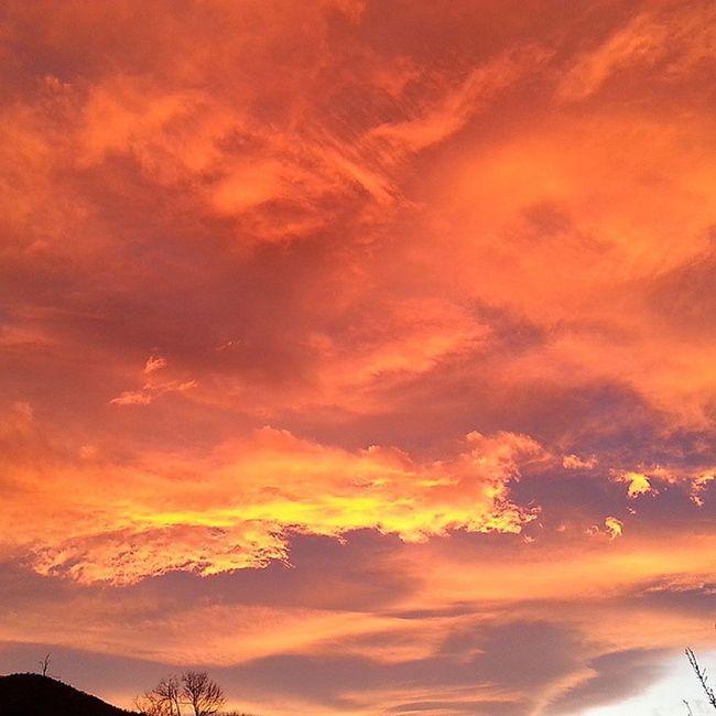 Io sono quella con la testa sempre rivolta verso il Cielo per giocare con le Nuvole Drago Tramonto Tucosavedi ? Sunset Burning Sky Skyporn Nofilter Red Clouds