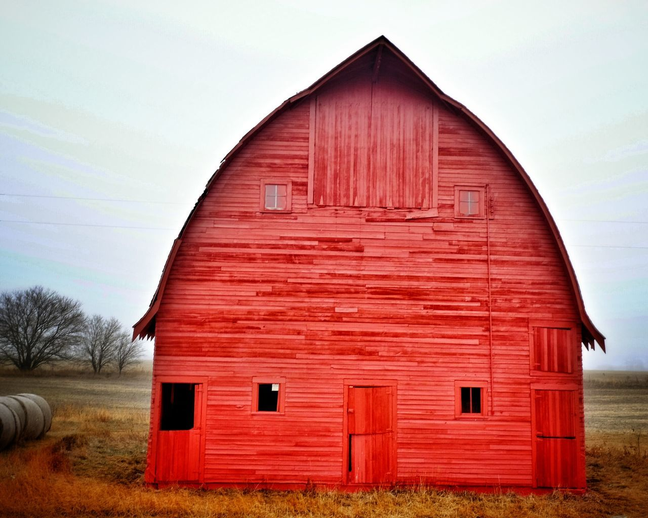 """If you've ever driven through a rural area, it's likely that you've seen the red barns that speckle the farming landscape. There are several theories as to why barns are painted red. Centuries ago, European farmers would seal the wood on their barns with an oil, often linseed oil -- a tawny-colored oil derived from the seed of the flax plant. They would paint their barns with a linseed-oil mixture, often consisting of additions such as milk and lime. The combination produced a long-lasting paint that dried and hardened quickly. (Today, linseed oil is sold in most home-improvement stores as a wood sealant). Now, where does the red come from? In historically accurate terms, """"barn red"""" is not the bright,fire-enginered that we often see today, but more of a burnt-orange red. As to how the oil mixture became traditionally red, there are two predominant theories: Wealthy farmers addedbloodfrom a recent slaughter to the oil mixture. As the paint dried, it turned from a bright red to a darker, burnt red.Farmers addedferrous oxide, otherwise known asrust, to the oil mixture. Rust was plentiful on farms and is a poison to many fungi, including mold and moss, which were known to grown on barns. These fungi would trap moisture in the wood, increasing decay. Regardless of how the farmer tinted his paint, having a red barn became a fashionable thing. They were a sharp contrast to the traditional white farmhouse. As European settlers crossed over to America, they brought with them the tradition of red barns. In the mid to late 1800s, as paints began to be produced with chemical pigments, red paint was the most inexpensive to buy. Red was the color of favor until whitewash became cheaper, at which point white barns began to spring up. Old Barns Rural America Farm Life Check This Out Getty Images Barn My Neighborhood EyeEm Best Shots Portrait Of America Farmlife EyeEm Bestsellers"""
