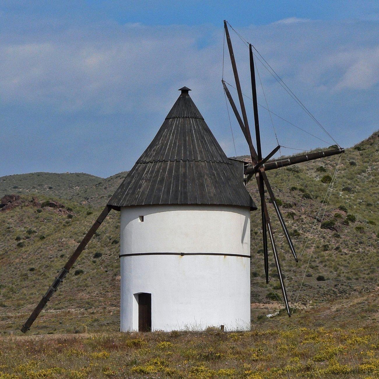 Those over there are not giants but windmills - Aquellos que allí parecen no son gigantes, sino molinos de viento - Aquells que allà es veuen no són gegants, sinó molins de vent. (