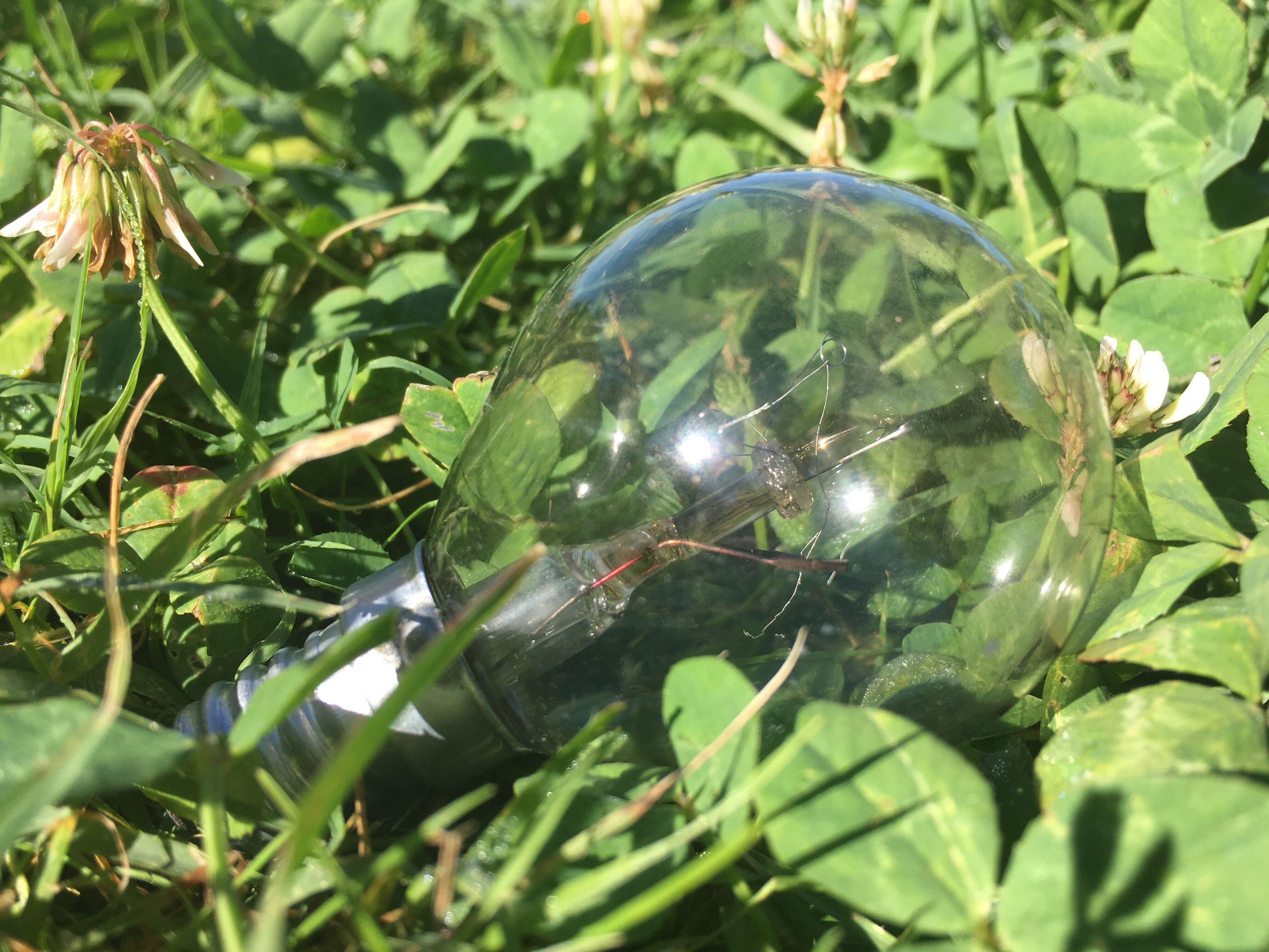 Lamp Green Grass Electricity  Dead Lamp Broken