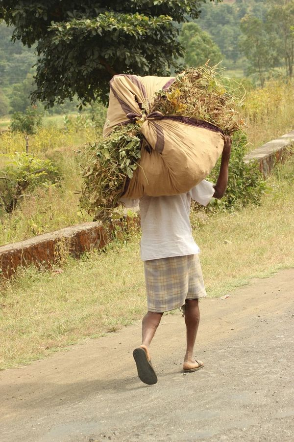 Pepole Farmer Kalyan Taking Photo
