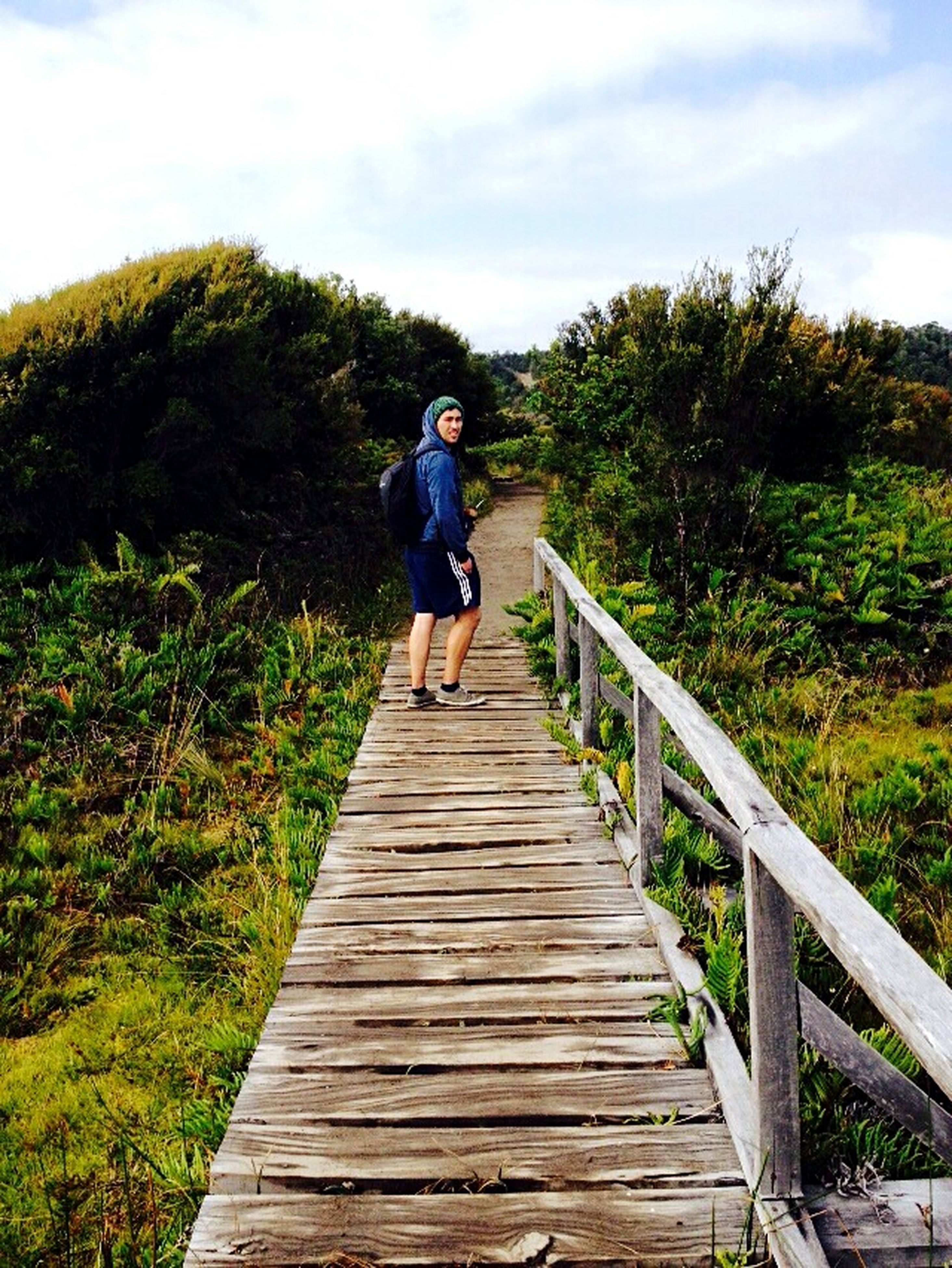 full length, the way forward, rear view, lifestyles, tree, sky, casual clothing, leisure activity, boardwalk, wood - material, railing, walking, grass, nature, tranquility, plant, tranquil scene, growth