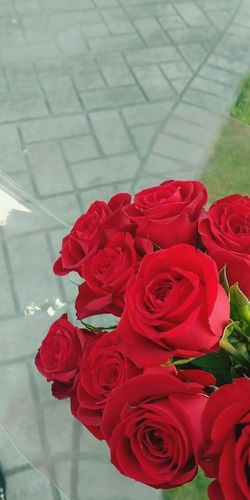 Rose - Flower Flower Red Petal Nature Fragility Beauty In Nature Flower Head No People Day Rose Petals Outdoors Bouquet Close-up Freshness