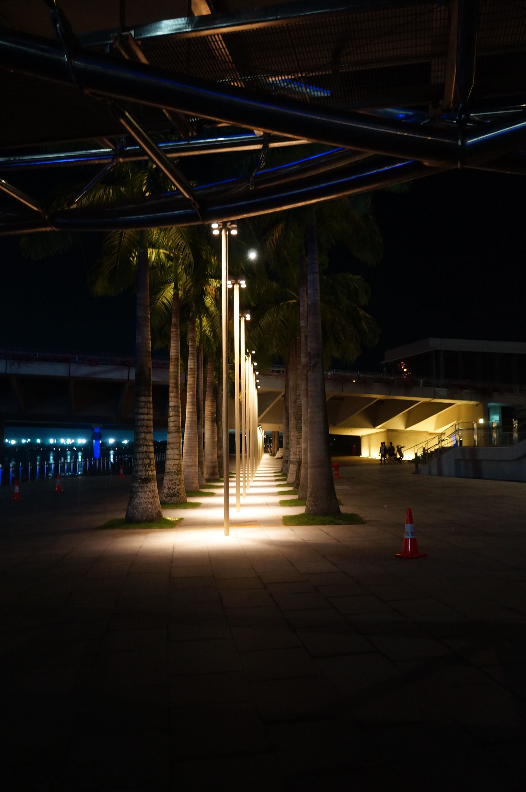 night, illuminated, built structure, architecture, bridge - man made structure, connection, city, the way forward, transportation, building exterior, street light, tree, lighting equipment, incidental people, street, architectural column, road, outdoors, engineering, city life