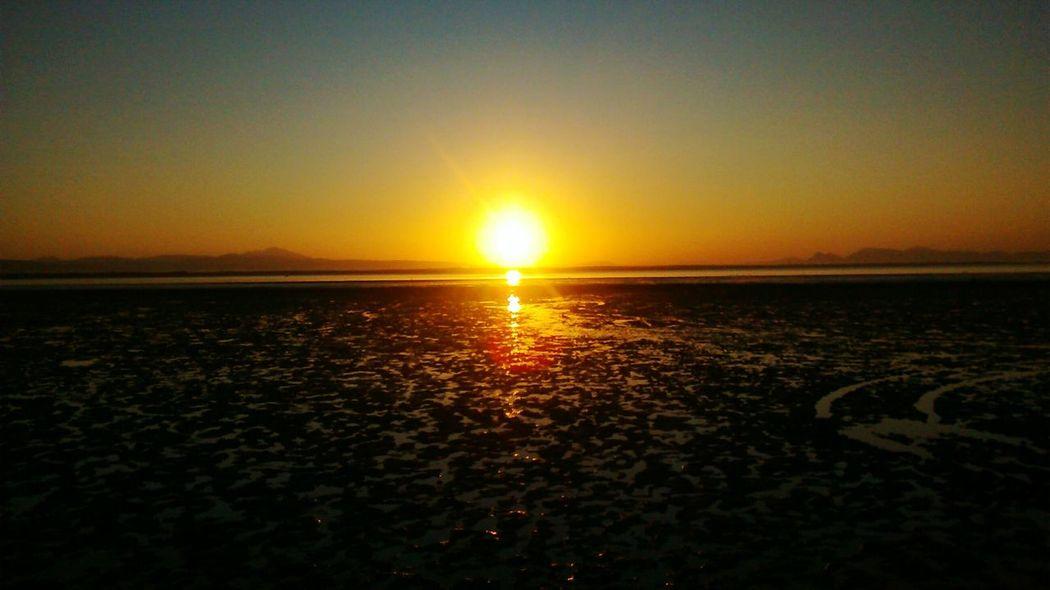 Orange Sun Sun Morning