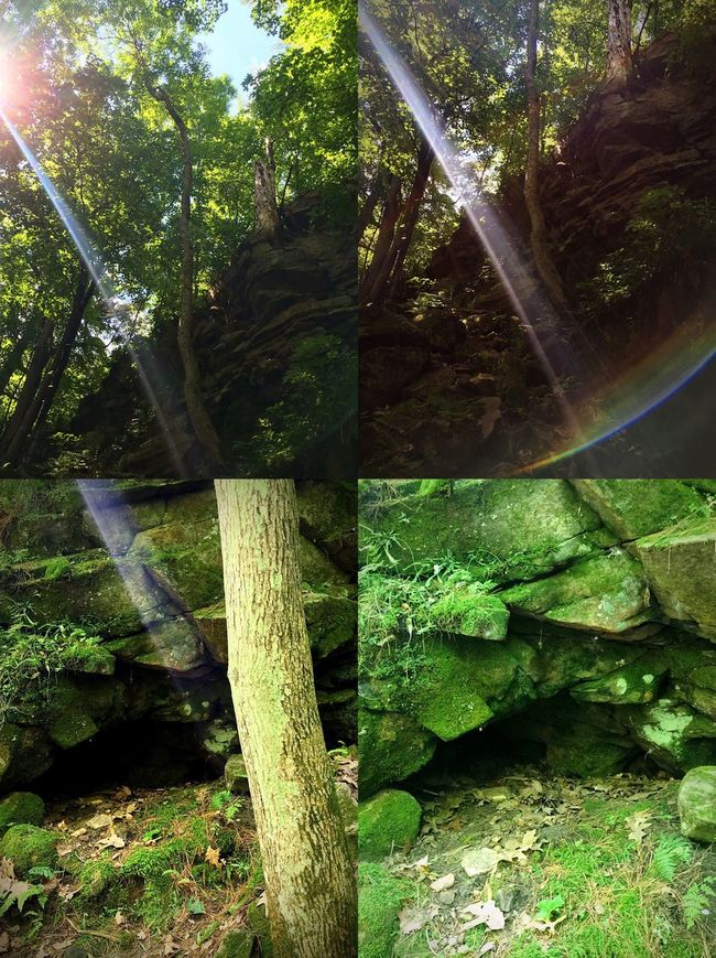 Found a wee little Leprechauns home while out exploring 🍀 The sun rays and rainbow actually lead me to the rock. A big Thank You to my Nana & Popsie for leading me in this direction 💜 Love you always always! Sunrays Sunray Sunrays Through The Branches Green Green Color Emerald Leprechauns Leprechaun Leprechaun House Rock Formation Rock Formations Rainbow Rock Rocks Trees Tree Tree Trunk Cave Rock House Rainbows Adventure Club