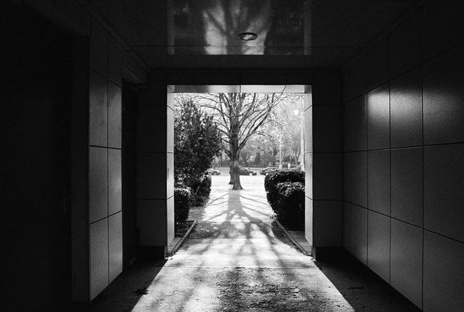 Analogue Photography Architecture Black & White Copy Space Gate Lines And Angles NIKON F100 Neopan400 Sunlight Blackandwhite Building Exterior Doorway Film Photography Gateway Geometric Shape Light And Shadow Monochrome Monochrome Photography No People Passage Schwarzweiß City Karl-Marx-Allee